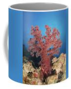 Red Soft Coral,  Australia Coffee Mug
