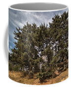 Red Spruce On Whitetop Mountain Coffee Mug