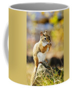 Red Squirrel Coffee Mug by Elena Elisseeva