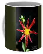 Red Star Dahlia Coffee Mug