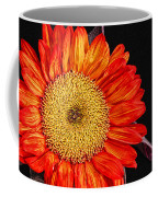 Red Sunflower II  Coffee Mug
