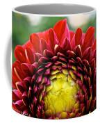Red Sunrise Dahlia Coffee Mug