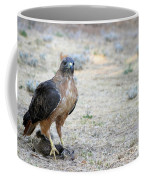 Red Tailed Hawk Catch Coffee Mug