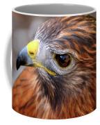 Red-tailed Hawk Close Up Coffee Mug