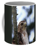 Red-tailed Hawk - Hawkeye Coffee Mug