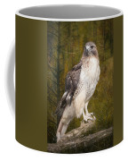 Red Tailed Hawk Perched On A Branch In The Woodlands Coffee Mug