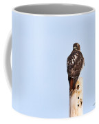 Red-tailed Hawk Surveying The Layout Coffee Mug