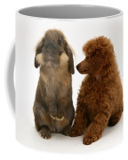 Red Toy Poodle Pup With A Lionhead Coffee Mug