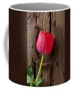 Red Tulip And Horseshoe  Coffee Mug