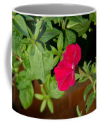 Red Velvet Petunia Coffee Mug