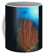 Red Whip Fan Coral With Diver, Papua Coffee Mug
