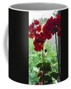 Red Window Geraniums Coffee Mug