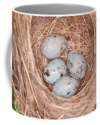Red-winged Blackbird Nest Coffee Mug