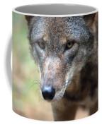 Red Wolf Closeup Coffee Mug