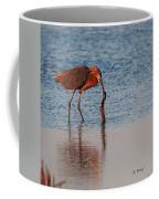 Reddish Egret Checking It Out Coffee Mug