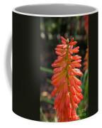 Redhot Popsicle Coffee Mug
