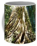 Redwood Trees Forest Art Prints Redwoods Coffee Mug