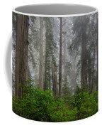 Redwoods In Breaking Mists Coffee Mug