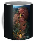 Reef Sponge Coral And Yellow Fish Coffee Mug