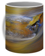 Reflected Autumn Color Coffee Mug