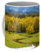 Reflected Seasons Coffee Mug
