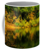 Reflection Of Autumn Colors Coffee Mug