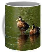 Reflection On The River Coffee Mug