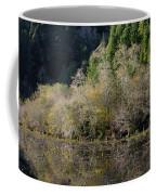 Reflections On Marshall Pond Coffee Mug