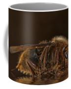 Reflexion D'un Hornet  Coffee Mug
