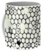 Reovirus Coffee Mug by Science Source