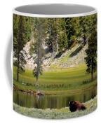 Resting Buffalo By Pond Coffee Mug