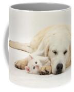 Retriever With Friendly Kittens Coffee Mug