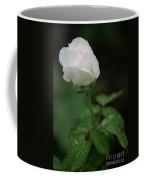 Reverence And Humility Coffee Mug