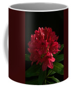 Rhododendron At Sunset 2 Coffee Mug