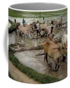 Rice Cultivation Coffee Mug