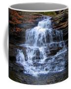 Ricketts Glen Waterfall 4075 Coffee Mug