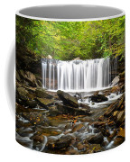 Ricketts Glen Waterfall Oneida Coffee Mug