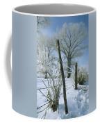 Rime From Rare Fog Coats Fence Coffee Mug by Gordon Wiltsie