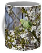 Ring-necked Parakeet Coffee Mug