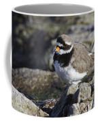 Ringed Plover Coffee Mug
