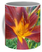 Ripe Blood Orange Coffee Mug by Trish Hale