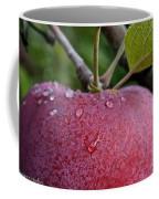 Ripe N Ready Coffee Mug