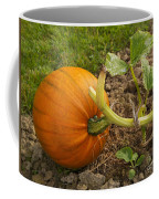Ripe Pumpkin Coffee Mug