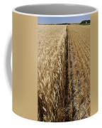Ripened Wheat And Stubble In Saskatchewan Field Coffee Mug