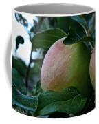 Ripening Progress Coffee Mug