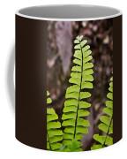 Rising Fern 1 Coffee Mug