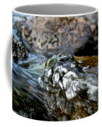 River Rock Coffee Mug