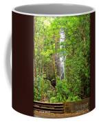 Roadside Waterfall Coffee Mug