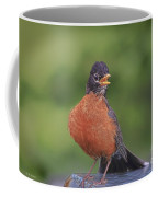 Robin In Distress Coffee Mug by Deborah Benoit