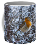 Robin On A Frosty Morning Coffee Mug